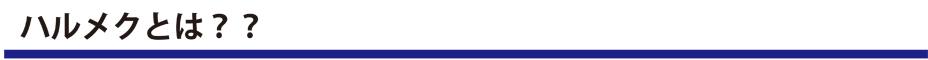 【ナビトモ女子部×ハルメクコラボ企画】『若見えメイク講座&ランチ交流会in神楽坂』レポート